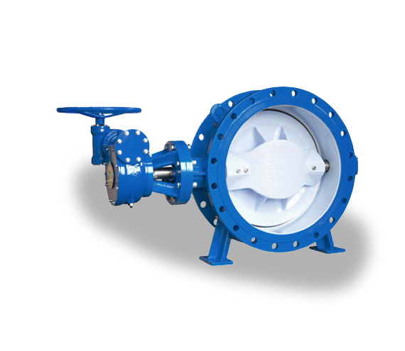 Double Eccentric Butterfly Valve -- CG-1-3-2-X-Q